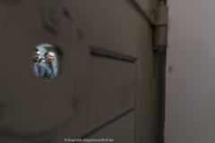 Lab_europ_20180823_c_AngelavonBrill_10